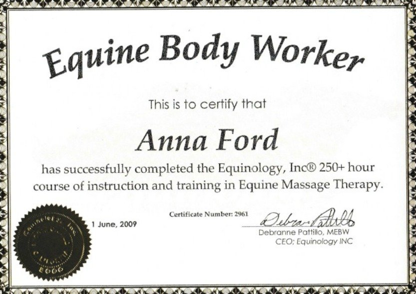 Equine Massage Therapy | Epona Equine Massage