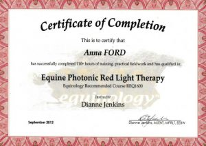 Red Light Therapy | Epona Equine Massage